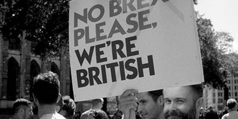 Extension Lecture 02: Brexit